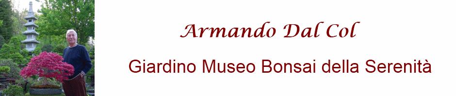 Armando Dal Col Bonsai