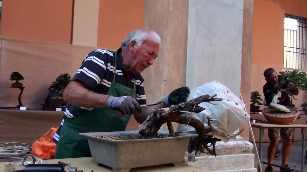 Settembre 2015 dimostrazine alla Giareda di Reggio Emilia (1)