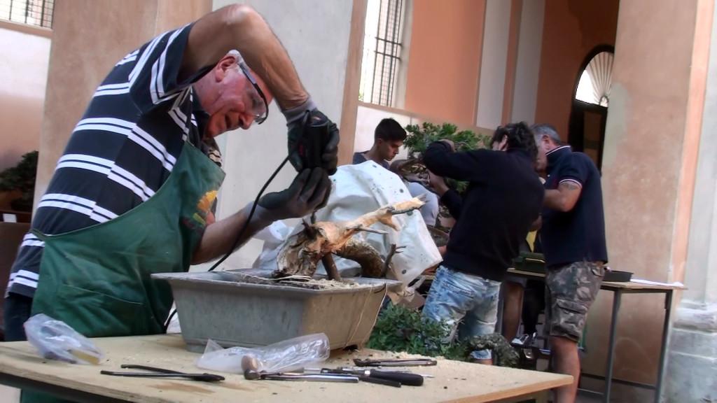 Settembre 2015 dimostrazine alla Giareda di Reggio Emilia (11)