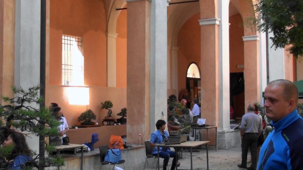 Settembre 2015 dimostrazine alla Giareda di Reggio Emilia (21)