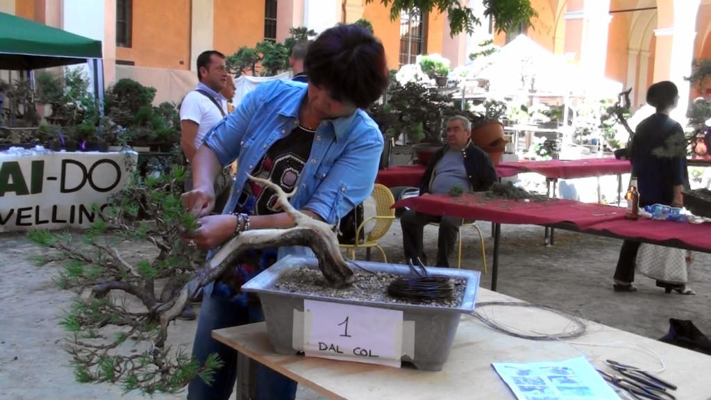 Settembre 2015 dimostrazine alla Giareda di Reggio Emilia (23)