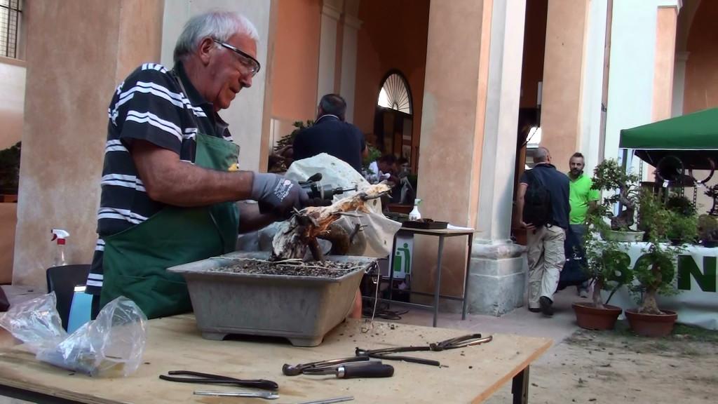 Settembre 2015 dimostrazine alla Giareda di Reggio Emilia (9)