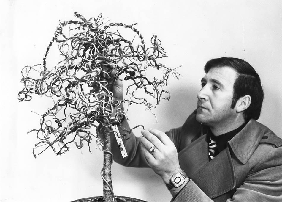 Armando con la Betulla nel 1971